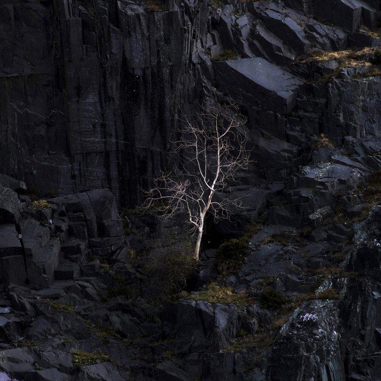 Behind the Lens - Matt Holland
