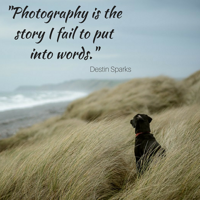 Photography quotes to inspire and motivate