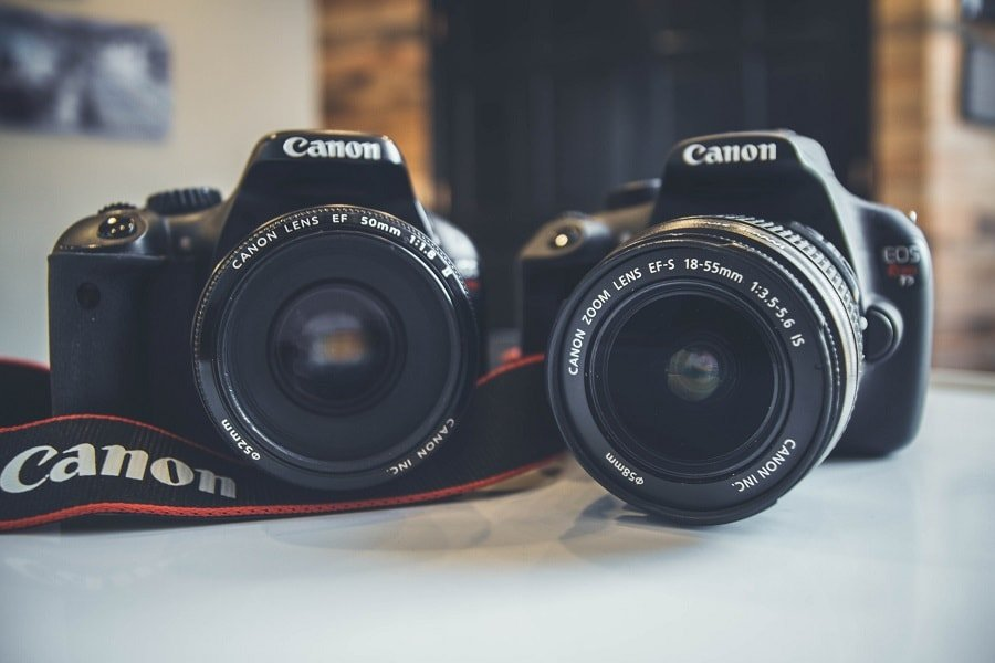 Why You Need a Nifty Fifty Lens in Your Photography Kit Bag
